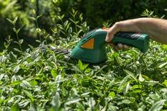 Gardening hedge cutting Royalty Free Stock Photos