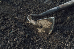 Gardening hoe Stock Photography