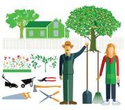 Gardening at home Stock Image