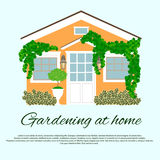 Gardening at home Royalty Free Stock Image