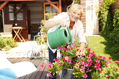 Gardening at home Royalty Free Stock Photo