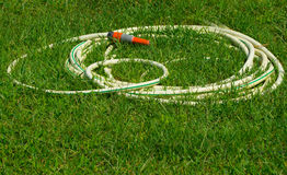 Gardening hose on grass Stock Photo