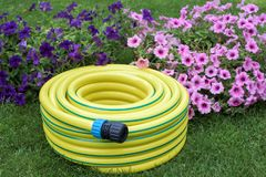 Gardening- hose pipe. Yellow hose pipe in a garden with flowers royalty free stock photography