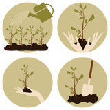 Gardening Icons Collection Stock Images
