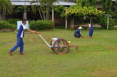 The gardening and lawn. At school thailand Stock Photography