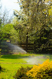 Gardening. Lawn sprinkler spraying water over grass. Royalty Free Stock Photos