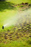 Gardening. Lawn sprinkler spraying water over grass. Royalty Free Stock Photography