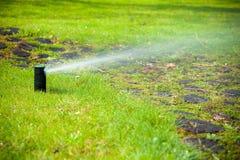 Gardening. Lawn sprinkler spraying water over grass. Stock Images