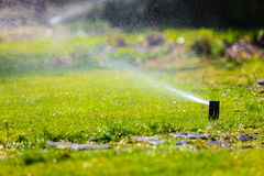 Gardening. Lawn sprinkler spraying water over grass. Royalty Free Stock Photo