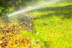 Gardening. Lawn sprinkler spraying water over grass. Royalty Free Stock Photos