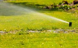 Gardening. Lawn sprinkler spraying water over grass. Stock Photo