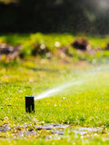 Gardening. Lawn sprinkler spraying water over grass. Stock Image