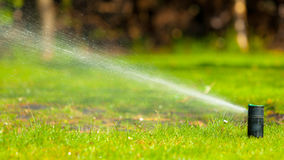 Gardening. Lawn sprinkler spraying water over grass. Stock Photos