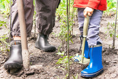Gardening. Legs of woman and child is on the soil with gardening royalty free stock photo