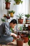 Gardening man royalty free stock photo
