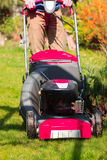 Gardening. Mowing green lawn with red lawnmower Stock Image