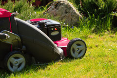 Gardening. Mowing green lawn with red lawnmower Stock Images