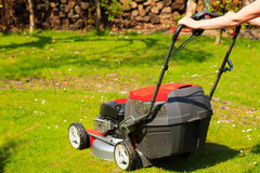 Gardening. Mowing green lawn with red lawnmower Royalty Free Stock Image
