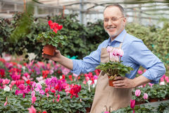 Gardening is my favorite and beloved hobby Royalty Free Stock Photo