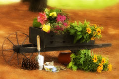 Gardening N' Wheelbarrel Royalty Free Stock Photos