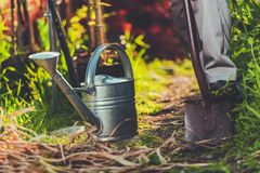 Gardening with Passion royalty free stock photos