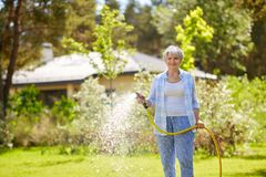 Senior woman watering lawn by hose at garden. Gardening and people concept - happy senior woman watering lawn by garden hose at summer royalty free stock images