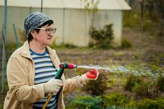 Gardening and people concept - happy senior woman watering lawn by garden hose at summer royalty free stock photo