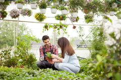 Gardening people, Florist working with flowers in greenhouse Stock Photos