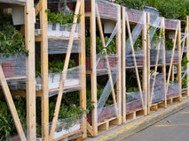 Gardening plant supply pallets for garden center sale Royalty Free Stock Photos
