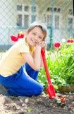 Gardening, planting concept Stock Photos