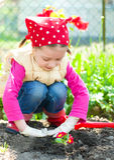 Gardening, planting concept Stock Photo