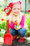 Gardening, planting concept Royalty Free Stock Photography