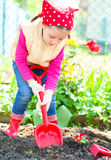 Gardening, planting concept Stock Images