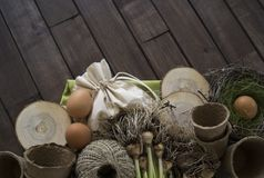 Potted daffodils with bulbs for spring planting. Gardening and planting concept. Planting hyacinth in ceramic pot. Seedlings garden tools, tubers bulbs gladiolus Royalty Free Stock Photography