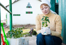 Gardening, planting concept Stock Photo