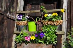 Gardening Planting Table Stock Photo