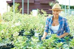 Gardening Stock Photography