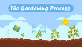 Gardening Process Flat Vector Banner with Text stock illustration