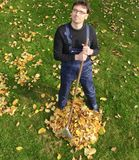 Gardening, raking leaves in the fall Royalty Free Stock Photos
