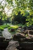 Gardening rockery Stock Images
