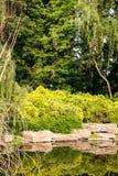 Gardening rockery Stock Image