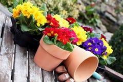 Gardening season Stock Image