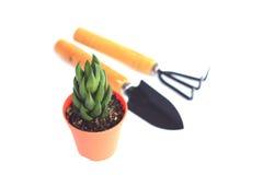 Gardening Series - Stock Image Royalty Free Stock Image