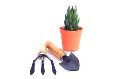 Gardening Series - Stock Image Royalty Free Stock Photo
