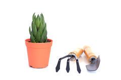 Gardening Series - Stock Image Stock Photos