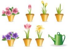 Gardening set. Royalty Free Stock Images