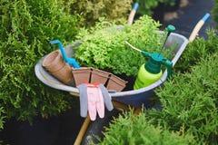 Gardening set Stock Image