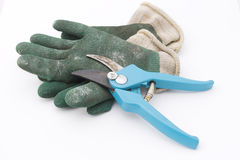 Gardening shears with gloves Stock Image