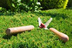 Gardening shears to trim hedges and bushes Royalty Free Stock Photos
