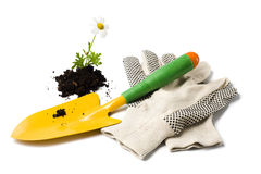 Gardening shovel and gloves Stock Photo